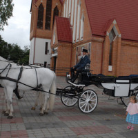 Horse cab in Warsaw